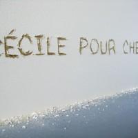 http://www.cecilemeynier.com/in/files/gimgs/th-26_rob_graff.jpg